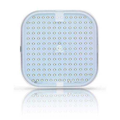 Goodlight 2D LED lamp